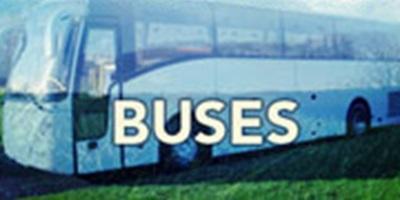 Northern Bass 14/15 - Bus Pass: Takapuna