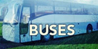 Northern Bass 14/15 - Bus Pass: Waipu Cove